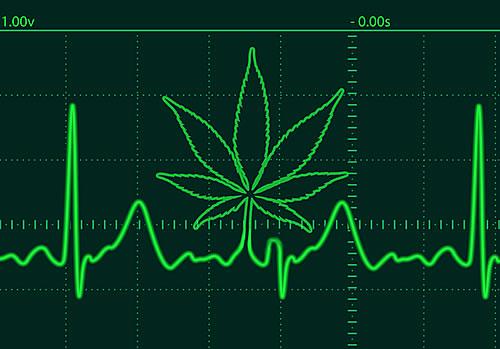 Medycyna Cannabis